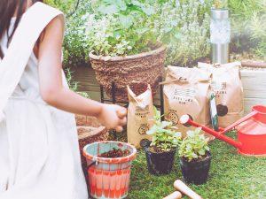 サムネイルハーブ菜園